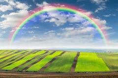 Landskap med jordbruks- fält Fotografering för Bildbyråer