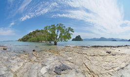 Landskap med mangroveträd och små öar arkivbild