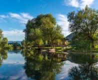 Landskap med reflexion i vattenträden i bakgrundsbergen Royaltyfri Bild