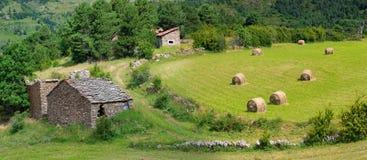 Landskap med skördade baler av sugrör i fält- och stenhus Royaltyfri Fotografi