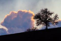 Landskap med solinställningen bak moln Royaltyfria Bilder