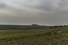 Landskap med sparat och moln royaltyfria foton
