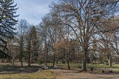 Landskap med träd och trädgårdar på den Borisova gradinaen Boris Garden i stad av Sofia, Bulgarien arkivfoto