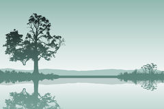 Landskap med treen Royaltyfria Bilder