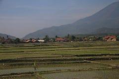 Landskap mellan Bandung och Kroya Arkivfoton