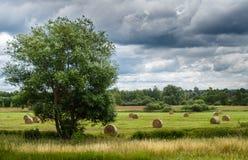Landskap miljö, sommar som är mulen, sugrörbaler på skördat fält royaltyfri fotografi