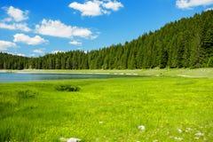 Landskap nära bergsjön Arkivfoton