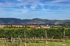 Landskap nära den Gottweig abbotskloster, Österrike Royaltyfri Bild