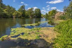 Landskap nära den Myhiia floden ukraine Royaltyfria Bilder