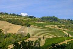 Landskap nära San Gimignano Tuscany Royaltyfri Foto