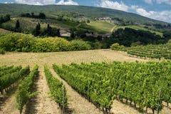 Landskap nära San Gimignano Tuscany Royaltyfria Foton