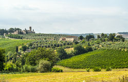 Landskap nära San Gimignano (Tuscany) fotografering för bildbyråer