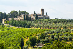 Landskap nära San Gimignano (Tuscany) royaltyfri fotografi