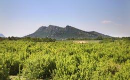 Landskap nära Studenci stämma överens områdesområden som Bosnien gemet färgade greyed herzegovina inkluderar viktigt, planera ut  Royaltyfri Bild