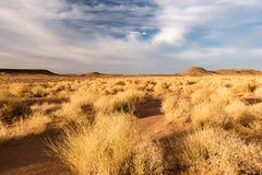 Landskap nära Zagora, Marocko Arkivfoto