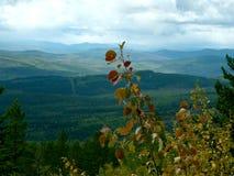 Landskap natur Arkivfoto