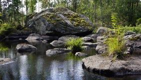 Landskap natur, sommar, stående, Arkivbilder