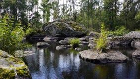 Landskap natur, sommar, stående, Arkivfoton