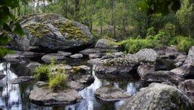 Landskap natur, sommar, stående, Royaltyfria Foton