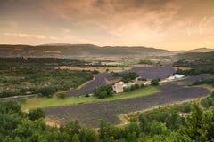 Landskap nära byn Sault för soluppgång, Provence, Royaltyfri Bild