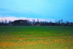 landskap nytt kultiverat fält med bakgrund lantgården och en härlig blå himmel royaltyfria foton