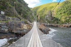 Landskap och bro i den Tsitsikamma nationalparken Royaltyfri Foto