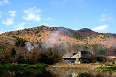 Landskap och japanskt hus Arkivbilder