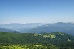 Landskap och skog för Carpathian berg Royaltyfri Foto