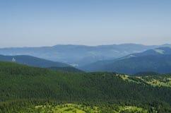 Landskap och skog för Carpathian berg Fotografering för Bildbyråer
