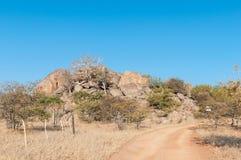 Landskap på den Hoada campingplatsen på C40en-road Royaltyfria Foton