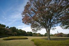 Landskap på den imperialistiska slotten, Japan Arkivfoto