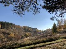 Landskap på en solig höstdag: gulnat passerar och sörjer på en bergig terräng arkivbilder
