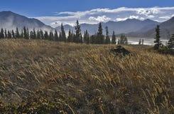 Landskap på kluanesjön Royaltyfria Bilder
