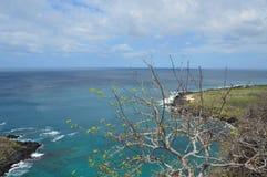 Landskap på San Cristobal Island - Galapagos Arkivbilder