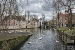 Landskap på sjön Minnewater i Bruges, Belgien Arkivfoto