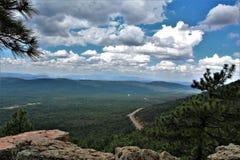 Landskap på träkanjon sjön, Coconino County, Arizona, Förenta staterna Royaltyfri Fotografi