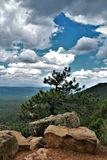 Landskap på träkanjon sjön, Coconino County, Arizona, Förenta staterna Royaltyfri Foto