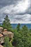Landskap på träkanjon sjön, Coconino County, Arizona, Förenta staterna Royaltyfria Bilder