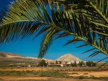 Landskap runt om La Oliva Royaltyfri Bild