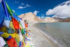 Landskap runt om Pangong sjön i Ladakh, Indien Royaltyfri Bild
