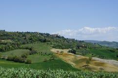Landskap runt om Pienza, Italien Royaltyfri Bild