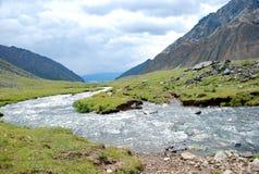 Landskap Ryssland, Lake Baikal och att fotvandra som reser, berg, rekreation, skog, shumack, cederträfilial Arkivbilder