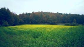 Landskap södra Tyskland Arkivbild