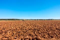 Landskap sikten av åkermark, plogad röd jord mot blå himmel Arkivbilder