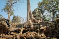 Landskap sikten av templen på Angkor Wat, Siem Reap, Cambodja Arkivbilder