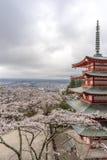 Landskap sikten uppifrån av den Chureito pagoden i Kawaguchi-knock-out, Fotografering för Bildbyråer