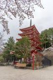 Landskap sikten uppifrån av den Chureito pagoden i Kawaguchi-knock-out, Arkivbild
