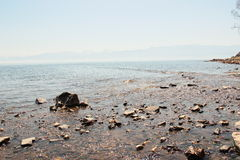 Landskap sjö Fotografering för Bildbyråer