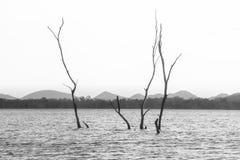 Landskap sjö i Thailand royaltyfri fotografi