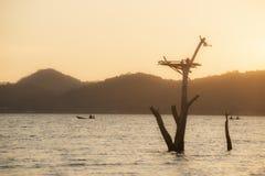 Landskap sjö i Thailand arkivfoto